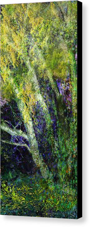 Birches Nature Trees Landscape Canvas Print featuring the painting Birches by Anne Weirich