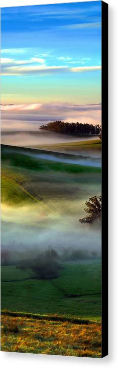 Oak Tree Canvas Print featuring the digital art Morning Fog Over Two Rock Valley Diptych by Wernher Krutein