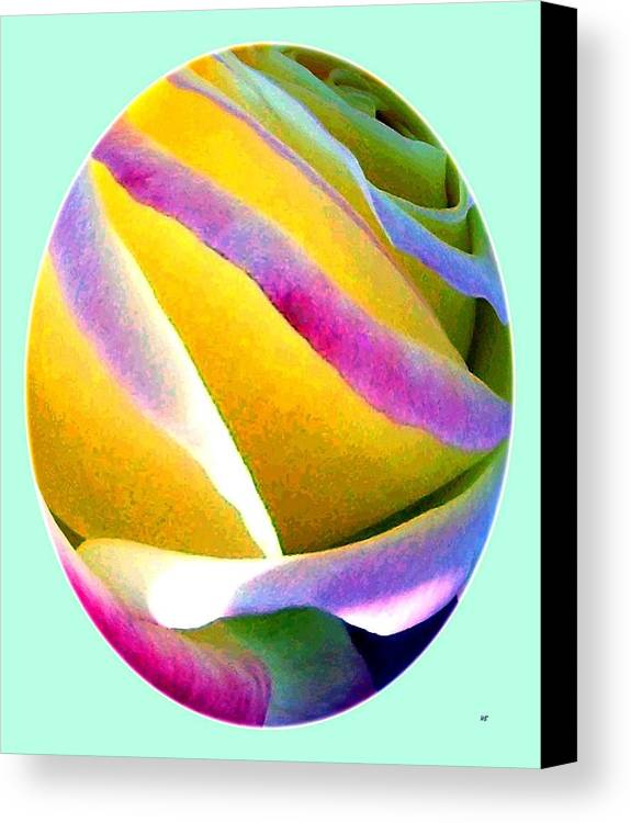 Abstract Rose Oval Canvas Print featuring the digital art Abstract Rose Oval by Will Borden