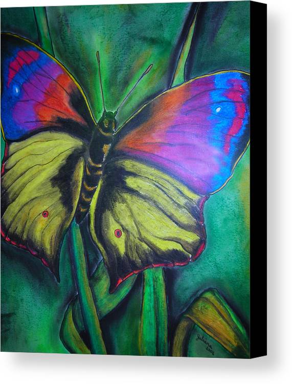 Still Life Canvas Print featuring the drawing Still Butterfly by Juliana Dube