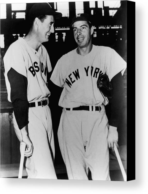 1950s Candids Canvas Print featuring the photograph Top Sluggers. Ted Williams by Everett