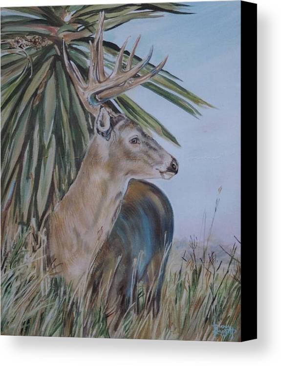 Animal Canvas Print featuring the painting Berry Buck by Diann Baggett