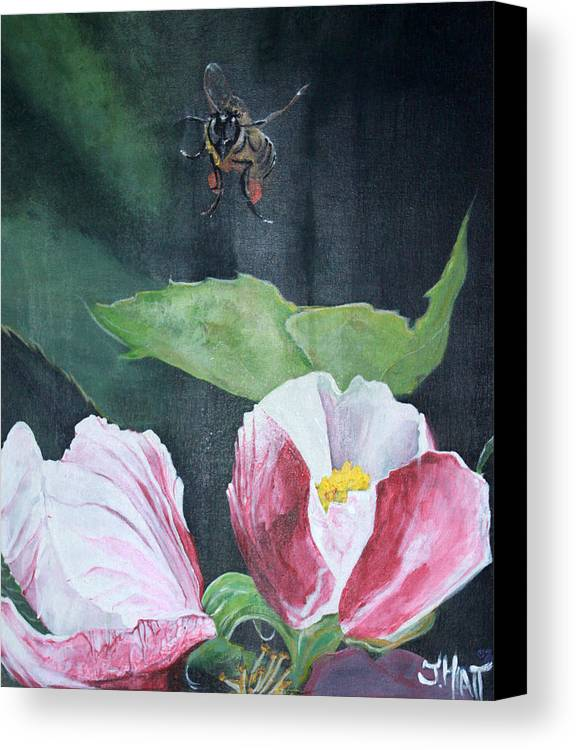 Apple Blossom Canvas Print featuring the painting Busy Bee by Justin Hiatt