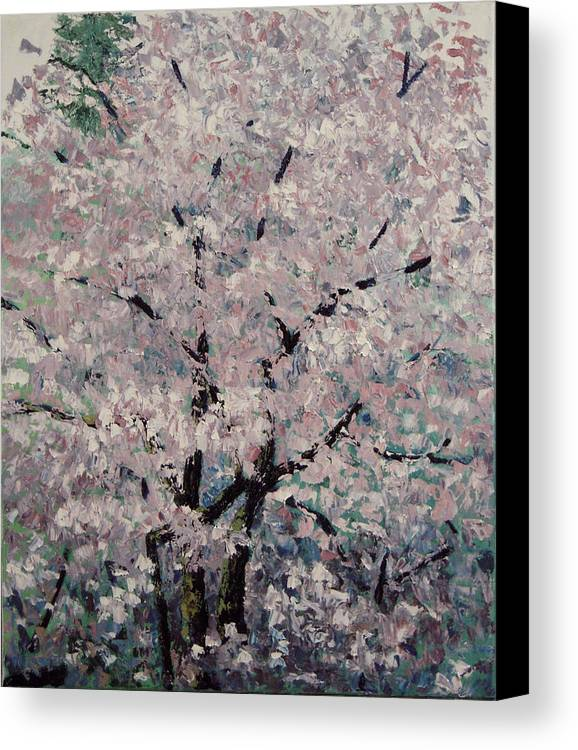 Trees Canvas Print featuring the painting Cherry Pink by Paul Illian