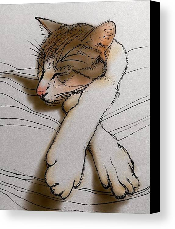 Babel Canvas Print featuring the drawing Purrfect Pose by Pookie Pet Portraits