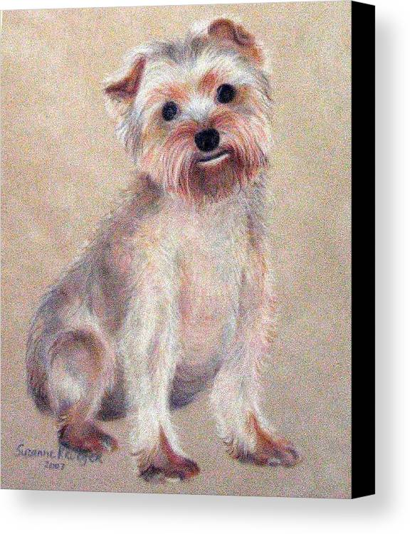 Yorkie Canvas Print featuring the pastel Tootsie by Suzanne Krueger