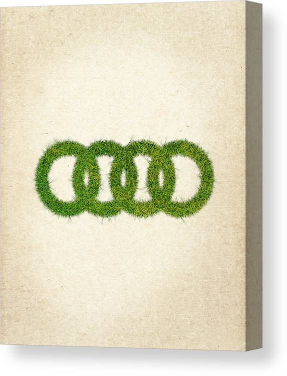 Audi Grass Logo Canvas Print