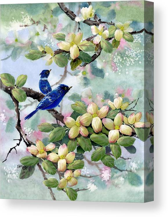 Blue Jays Canvas Print featuring the painting A Touch Of Pink On White by Eileen Fong