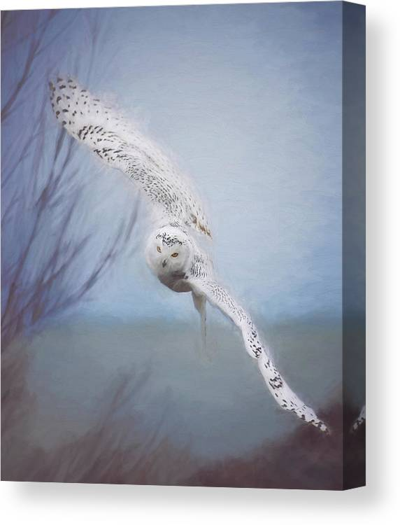 Wildlife Canvas Print featuring the photograph Snowy Owl In Flight Painting 2 by Carrie Ann Grippo-Pike