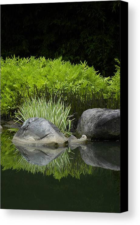 Water Canvas Print featuring the photograph Balance by Deborah Gallaway