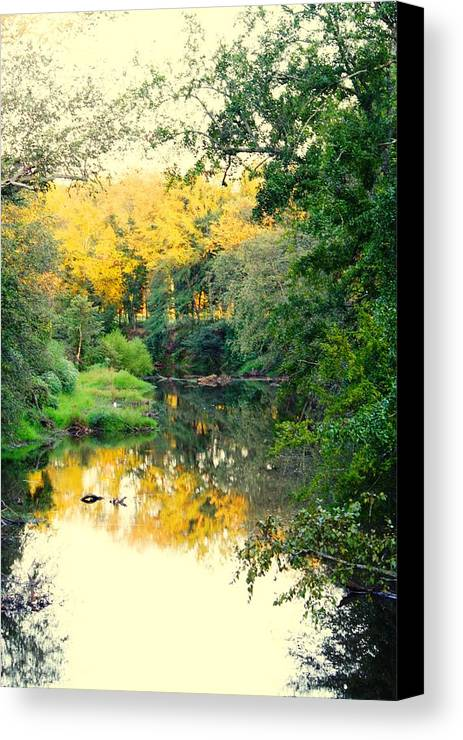 River Canvas Print featuring the photograph Chunky River Reflections by Lisa Johnston