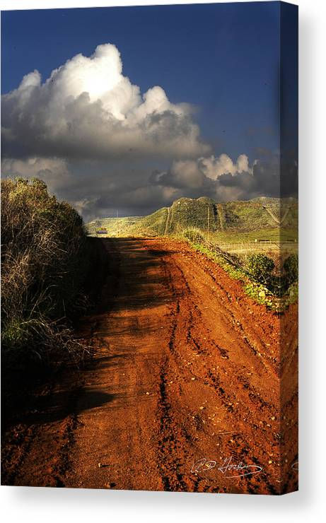 Landscape Canvas Print featuring the photograph Noble Road by Richard Gordon