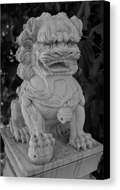 Des Canvas Print featuring the photograph Asian Dog by Claus Siebenhaar