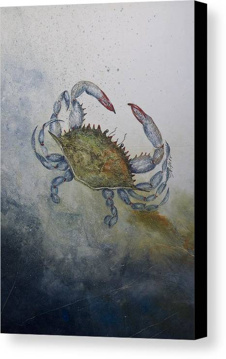Crab Canvas Print featuring the mixed media Blue Crab Print by Nancy Gorr