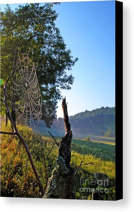 West Virginia Canvas Print featuring the photograph Dew On Spider Web by Thomas R Fletcher