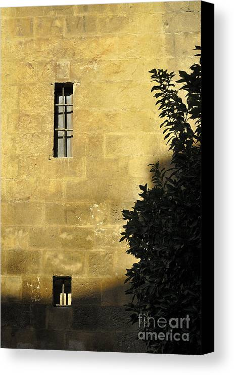 Canvas Print featuring the photograph Granada Cathedral by Guido Montanes Castillo