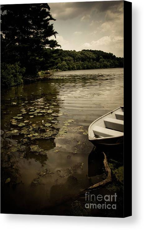 Allegheny County Canvas Print featuring the photograph Lilypads In The Lake by Amy Cicconi