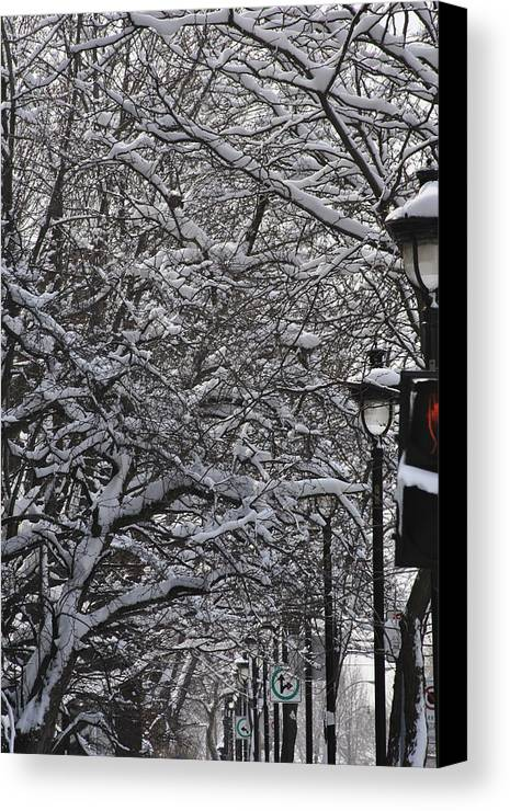 Snow Canvas Print featuring the photograph Snowy Way by Frederico Borges