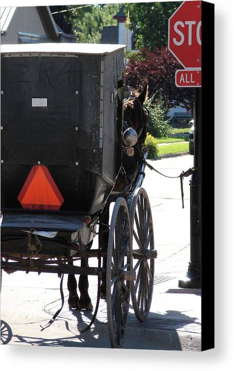Amish Canvas Print featuring the photograph Stopped Buggy by Cassie Peters