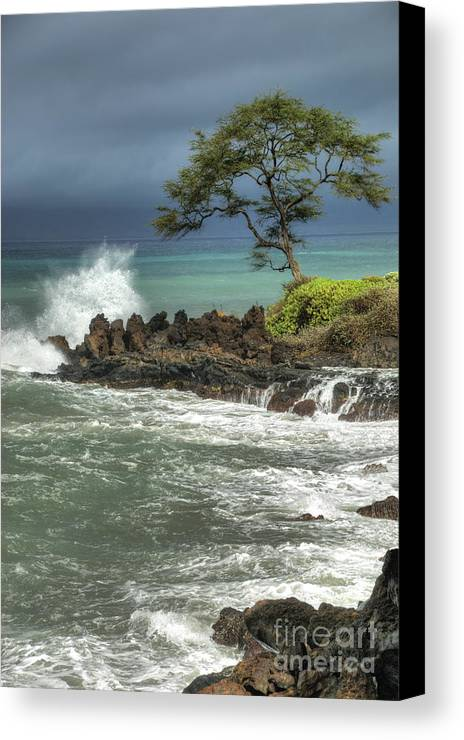 Waterscape Canvas Print featuring the photograph Stormy Maui Morning by Sandra Bronstein