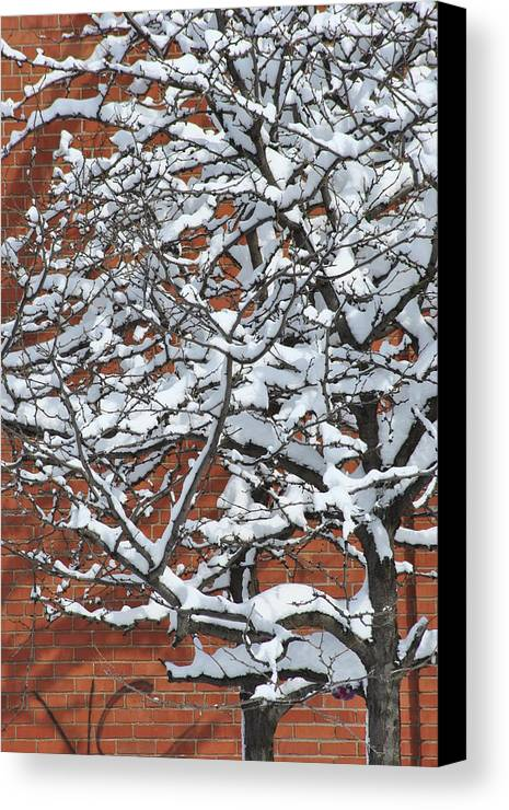 Snow Canvas Print featuring the photograph The Snow And The Wall by Frederico Borges