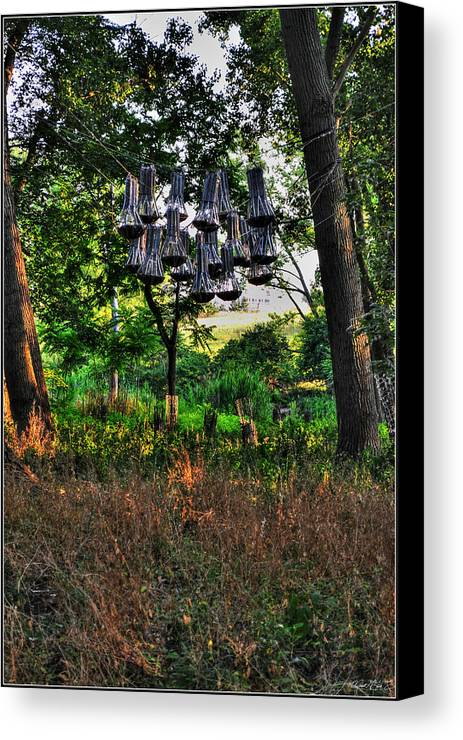 Canvas Print featuring the photograph 002 Bat Homes by Michael Frank Jr