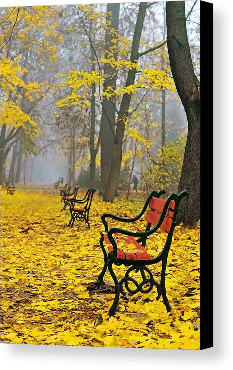 Alley Canvas Print featuring the photograph Red Benches In The Park by Jaroslaw Grudzinski