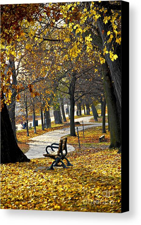 Park Canvas Print featuring the photograph Autumn Park In Toronto by Elena Elisseeva