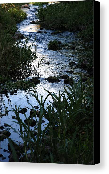 Creek Canvas Print featuring the photograph Wondering Waters by Dirk Cowart