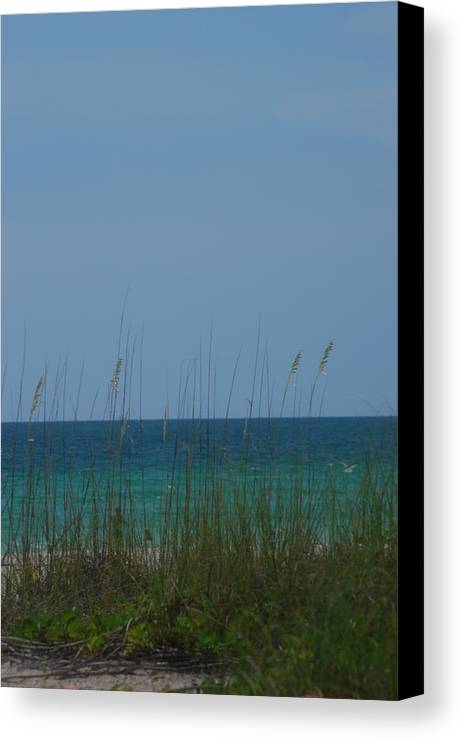 Landscape Canvas Print featuring the photograph Holmes Beach Florida 2 by Lisa Gabrius