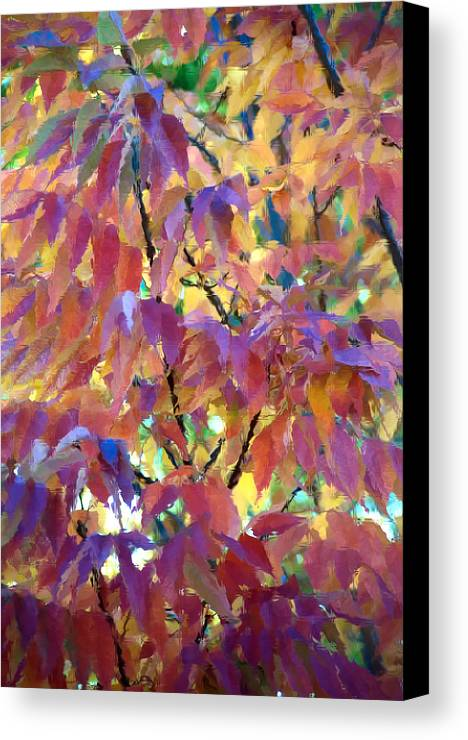 Ash Tree Canvas Print featuring the photograph Autumn Ash Tree 3 by Steve Ohlsen
