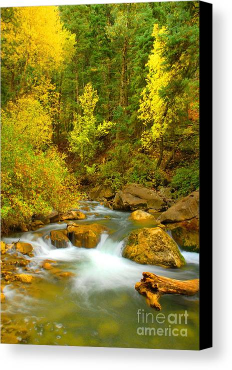 Utah Canvas Print featuring the photograph Autumn On Big Cottonwood River by Dennis Hammer