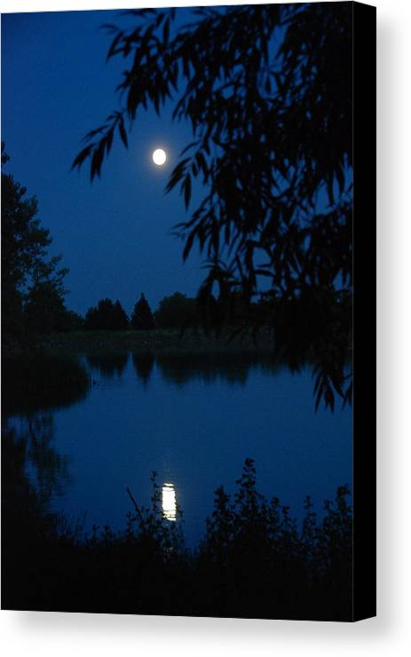 Moon Canvas Print featuring the photograph Blue Night Moon And Reflection by Katherine Nutt