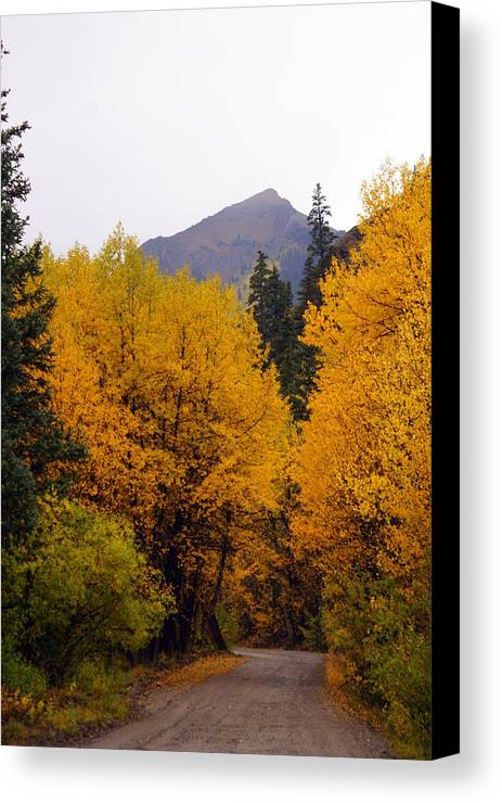 Fall Colors Canvas Print featuring the photograph Colorado Road by Marty Koch