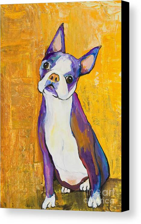 Boston Terrier Animals Acrylic Dog Portraits Pet Portraits Animal Portraits Pat Saunders-white Canvas Print featuring the painting Cosmo by Pat Saunders-White