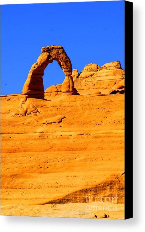 Arches Canvas Print featuring the photograph Delicate Arch by Dennis Hammer