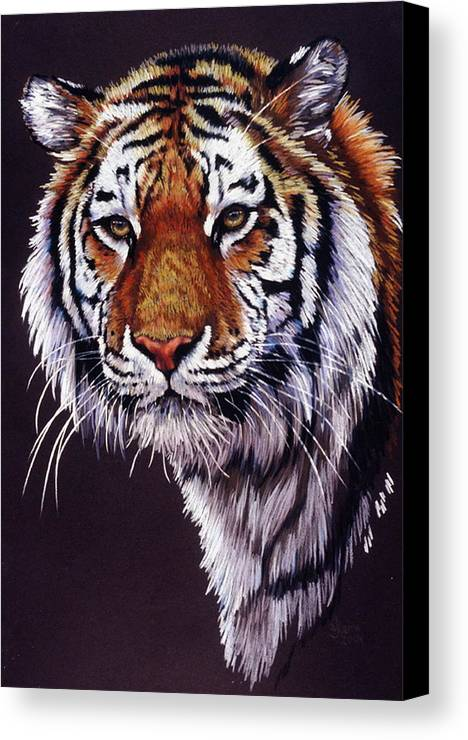 Tiger Canvas Print featuring the drawing Desperado by Barbara Keith