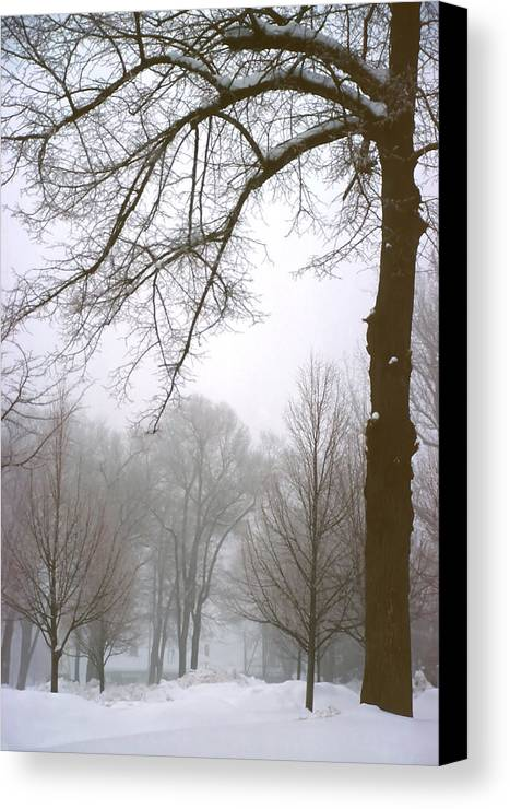 Fog Canvas Print featuring the photograph Foggy Morning Landscape 10 by Steve Ohlsen