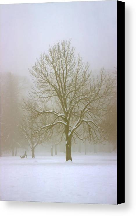 Nature Canvas Print featuring the photograph Foggy Morning Landscape 7 by Steve Ohlsen