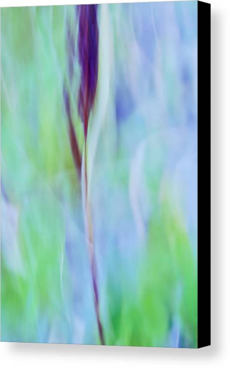 Blue Canvas Print featuring the photograph L Epi by Variance Collections