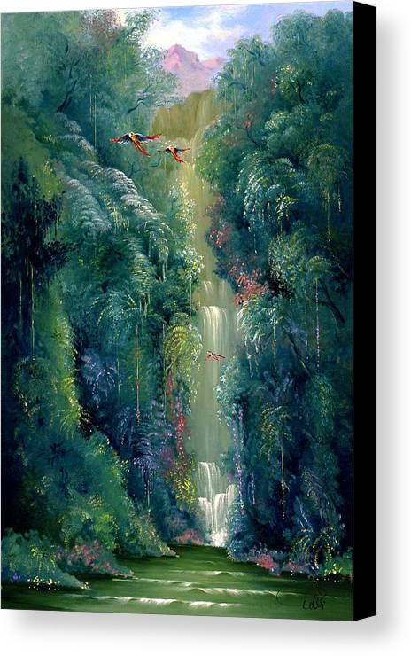 Landscape Canvas Print featuring the painting Lapa Rios by Hans Doller
