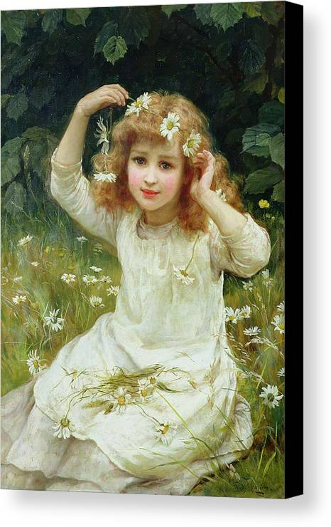 Marguerites Canvas Print featuring the painting Marguerites by Frederick Morgan