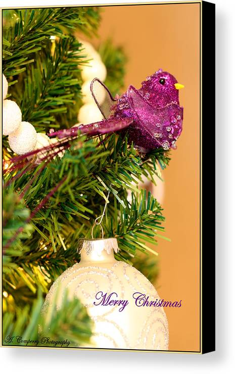 Christmas Card Canvas Print featuring the photograph Merry Christmas by Angela Comperry
