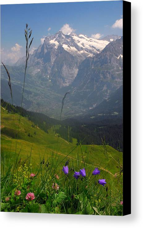 Grindelwald Canvas Print featuring the photograph Mount Wetterhorn And The Grindelwald by Anne Keiser