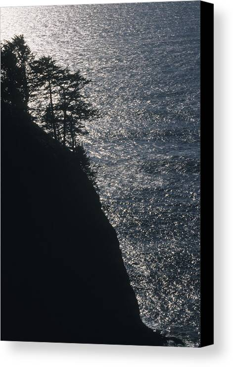 Oregon Canvas Print featuring the photograph Oregon Silhouette by Lynard Stroud