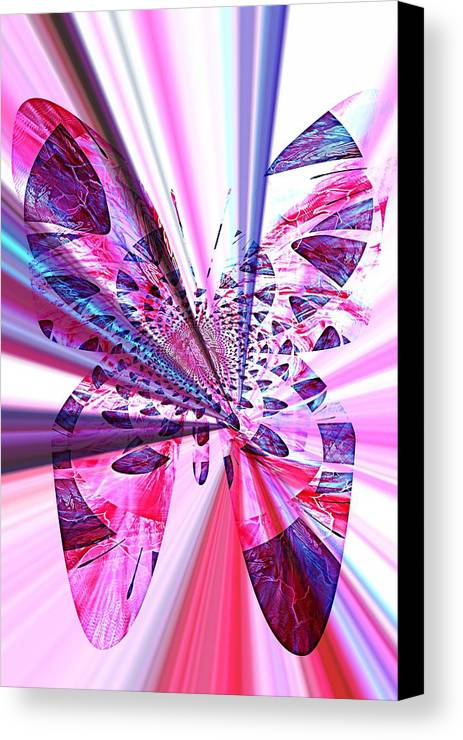 Rays Canvas Print featuring the photograph Rays Of Butterfly by Amanda Eberly-Kudamik