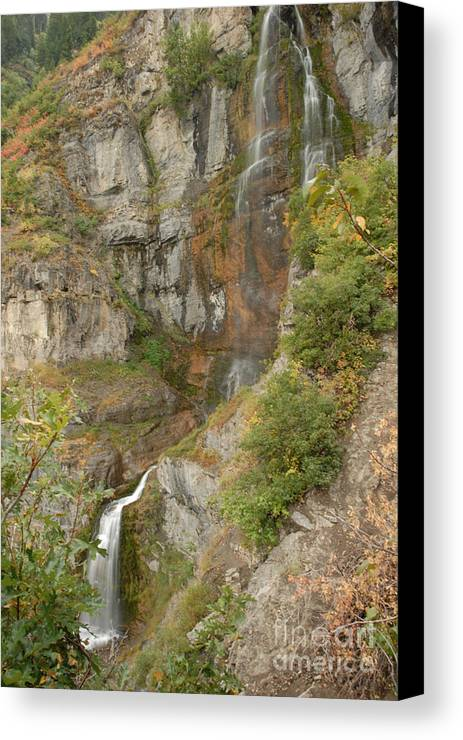 Waterfall Canvas Print featuring the photograph Stewart Falls In Autumn by Dennis Hammer