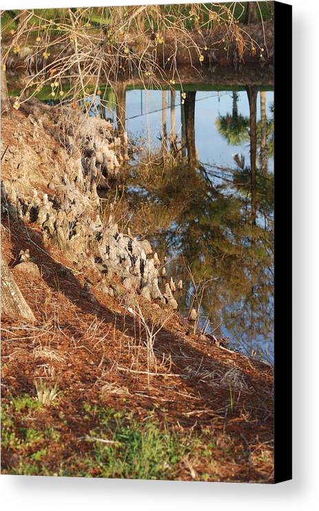 Reflections Canvas Print featuring the photograph Sunset By The Water by Rob Hans