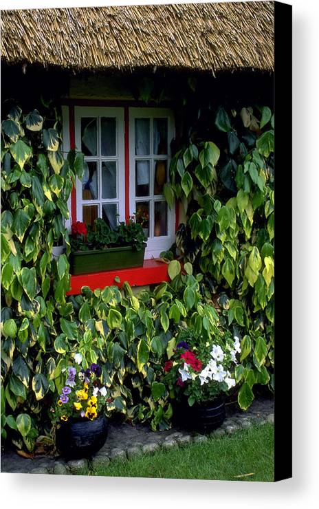 Ivy Canvas Print featuring the photograph The Perfect Cottage by Carl Purcell