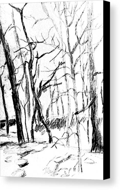 Trees Canvas Print featuring the drawing Trees At My House by Hae Kim